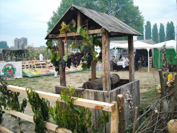bunar smederevska jesen Tourist event Smederevo's autumn
