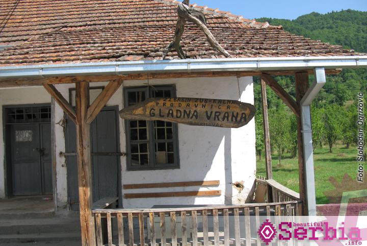 gladna vrana Istočna Srbija (II deo)