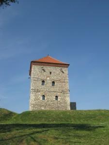 Kula Nenadovica 225x300 Ваљево, Бранковина, манастир Каона