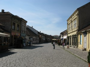 Tesnjar Bircaninova ulica 300x225 Ваљево, Бранковина, манастир Каона